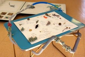 Table de J. Autin et de ses Lichens en crochet.