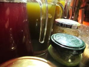 Détail des substances comestibles collectées à Sainte-Croix.